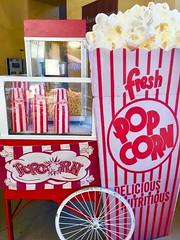 """POP Corn • <a style=""""font-size:0.8em;"""" href=""""http://www.flickr.com/photos/186296875@N03/49323755753/"""" target=""""_blank"""">View on Flickr</a>"""