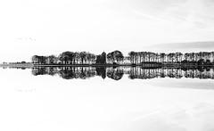 Specular Reflection (‹ Wim ›) Tags: kolderveen netherlands horizon minimalist illusion wimgoedhart blackandwhite reflexion refection church