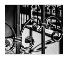 wrought iron fence (Armin Fuchs) Tags: arminfuchs lavillelaplusdangereuse würzburg wroughtironfence 6x7 diagonal niftyfifty hff