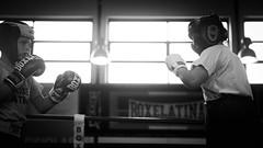 46656 - Match (Diego Rosato) Tags: boxe boxing pugilato boxelatina criterium giovanile young little boxer piccolo pugile nikon d700 tamron 2470mm rawtherapee bianconero blackwhite ring match incontro