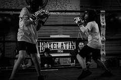 47063 - Match (Diego Rosato) Tags: boxe boxing pugilato boxelatina criterium giovanile young little boxer piccolo pugile nikon d700 tamron 2470mm rawtherapee bianconero blackwhite ring match incontro
