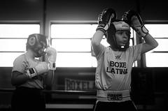 46653 - Match (Diego Rosato) Tags: criterium giovanile young boxe boxing pugilato boxelatina little boxer piccolo pugile nikon d700 tamron 2470mm rawtherapee bianconero blackwhite ring match incontro