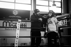46594 - Corner (Diego Rosato) Tags: criterium giovanile young boxe boxing pugilato boxelatina little boxer piccolo pugile nikon d700 tamron 2470mm rawtherapee bianconero blackwhite maestro master ring match incontro corner