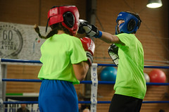 46867 - Jab (Diego Rosato) Tags: criterium giovanile young boxe boxing pugilato boxelatina little boxer piccolo pugile nikon d700 tamron 2470mm rawtherapee ring match incontro pugno punch jab