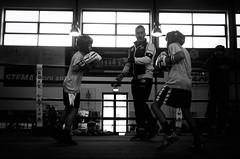 46747 - Dodge (Diego Rosato) Tags: boxe boxing pugilato boxelatina criterium giovanile young little boxer piccolo pugile nikon d700 tamron 2470mm rawtherapee bianconero blackwhite ring match incontro maestro master dodge schivata