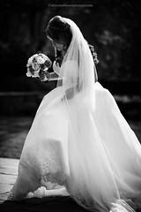 Bride & Bouquet (Steven Robinson Pictures) Tags: wedding blackandwhite bw girl contrast bride pretty stunning weddingdress weddingphotography 135mmf2dcnikkor cute model weddingflowers nikond810 scottish scotland scottishbride