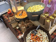 """POP Corn • <a style=""""font-size:0.8em;"""" href=""""http://www.flickr.com/photos/186296875@N03/49324456727/"""" target=""""_blank"""">View on Flickr</a>"""