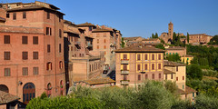 Siena panorama in evening light (Thomas Roland) Tags: unesco world heritage site piazza del campo europe europa italy italia italien sommer summer nikon d7000 travel rejse toscana tuscany by stadt town city siena view udsigt panorama evening light red