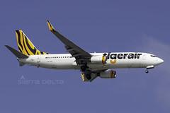 VH-VOR B738 TIGERAIR YBBN (Sierra Delta Aviation) Tags: tiger boeing b738 ybbn vhvor