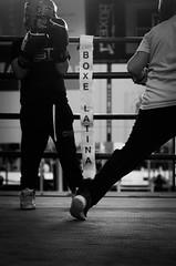 46978 - Match (Diego Rosato) Tags: criterium giovanile young boxe boxing pugilato boxelatina little boxer piccolo pugile nikon d700 tamron 2470mm rawtherapee bianconero blackwhite ring match incontro