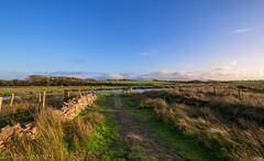 Rhuddgaer Stepping Stones Anglesey (joanjbberry) Tags: giant's stepping stones anglesey steppingstones rhuddgaer newborough dwyran afonbraint coast coastline coastal fujifilm fujifilmxt3 fugifilm xt3 landscape