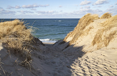 The View from Trail's End (brucetopher) Tags: sanddunes dunes dune beach ptown winter cold outside outdoor sand hike hiking outdoors wilderness wild beauty nature natural coast coastal seacoast seashore