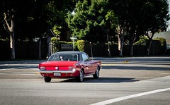 Mustang 1966 (49er Badger) Tags: mustang ford 1966