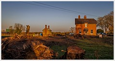 Derelict Railway Station IMG_1598 (Davey's Shots) Tags: derelict railwaystation drbeeching branchlineclosures sunset lode cambridgeshire buildingsite uprootedtees winter rurallandscape