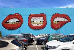 Lips mural Christchurch. (Bernard Spragg) Tags: lips mural art colour lumix christchurch wall street three carpark
