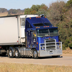 Blue K's (1 of 2) (Jungle Jack Movements (ferroequinologist) all righ) Tags: kenworth k100 yass nsw new south wales jerrawa australia hume highway freeway haulage hp horsepower big rig haul freight cabover trucker drive transport delivery bulk lorry hgv wagon road nose semi deliver cargo vehicle load freighter ship move roll motor engine power teamster truck tractor prime mover diesel injected driver cab beast wheel double b grunt manton k200 kenny kw paccar