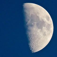 Afternoon, Post Winter Solstice, Waxing Gibbous Moon (Chic Bee) Tags: afternoon postwintersolstice moon planetearthsmoon waxinggibbousmoon canonpowershotsx70hs