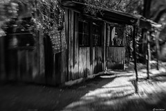 The Old Shack (Ken Mickel) Tags: arizona artistic boycethompsonarboretum fineart kenmickelphotography lensbaby lensbabysweet35 architecture blackandwhite building oldbuilding photography shack superior unitedstatesofamerica