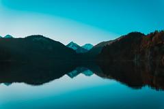 from skp-mm (skp-mm) Tags: alpseehohenschwangau bayern ilce7rm4 landscape landschaft nature sigma35mmf12dgdnart sony sonyalpha7riv winter a7riv α7riv schwangau deutschland
