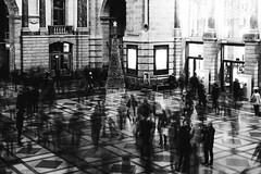 Pieces (koen_jacobs) Tags: blur antwerp streetphotography blackandwhite