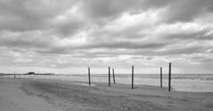 20191228-130509_add8ecc248b8e8c4cc2855d3680eb6948c9d763bacce9eab31d82269d845b863-efd053bca5e6d30dfc962a44feaa7fbe_1080 (velenux) Tags: pesaro cielo sky nuvole clouds mare sea adriatico biancoenero blackandwhite bnw bn bw spiaggia beach