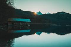 from skp-mm (skp-mm) Tags: alpseehohenschwangau bayern ilce7rm4 landscape landschaft nature sigma35mmf12dgdnart sony sonyalpha7riv winter a7riv α7riv