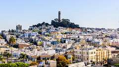 San Francisco (drasphotography) Tags: san francisco california pacific cityscape coit tower urban drasphotography nikon d810 nikkor2470mmf28 travelphotography travel reisefotografie stadtansicht city