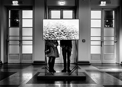 How Much Is The Fish? (freundsport) Tags: black street streetphotography museum fish people art