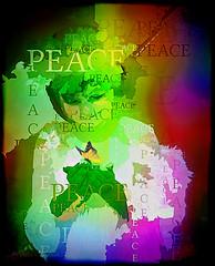 PEACE (SØS'Art) Tags: art artistic filterforge photoshop photomanipulation digitalart solveigøsterøschrøder nature colors butterfly child colorful girl peace rainbow text 100views 300views 400views 500views