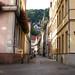 Heidelberg Oberbadgasse