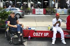Cozy up, little dog (klauslang99) Tags: klauslang streetphotography people toronto
