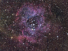 Rosettennebel (michel1276) Tags: ngc2244 ngc astrofotografie astrophotography astro deepsky deepskyfotografie deepskyphotography sonya7iii skywatcher150750 skywatcher rosettennebel nebel nebula nebulae sterne sternenhimmel stars