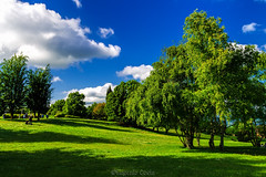 Verde - Green (Eugenio GV Costa) Tags: approvato verde green campagna nuvole cielo alberi countryside clouds sky trees outside