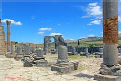 le Capitole de Volubilis 2/6 (philippedaniele) Tags: maroc meknes fes volubilis vestiges vestigesromains acropole temple cigognes