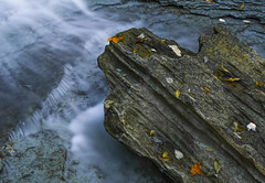 Rock, Water, Leaves (Bernie Kasper (6 million views)) Tags: art berniekasper blue color cliftyfallsstatepark cliftyfalls colour creek cascade digital d200 family fall fun hiking home indiana jeffersoncounty light landscape love leaf leaves longexposure madisonindiana madisonindianacliftyfallsstatepark nature nikon naturephotography new national nikkor nwr outdoors outdoor old outside ohioriver photography park photos photo people raw river rock travel trail unitedstates usa water waterfalls beauitufl