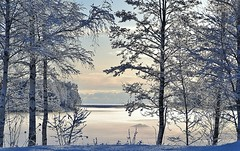 December 2015. (johnerlandaxelsson@gmail.com) Tags: ljusne hälsingland hälsingekusten vinter natur landskap landscape johnaxelsson sverige