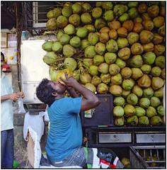 .ripe and whole we can move outside us (Herr Benini) Tags: mumbai bombay india kiev88 analog kodakportra400 coconut coconutwater drinking 6x6 120