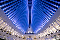 Oculus Blues (Unlimitеd) Tags: canon 5dmk4 newyork nyc newyorkcity urban architecture lighting manhattan perspective wideangle 1635 oculus
