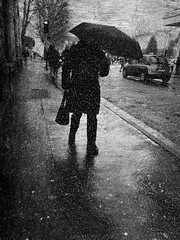 Whoever hurries does not arrive. .. (Fan.D & Dav.C Photgraphy) Tags: no people outdoors rain umbrella street city photography weather walking day protection full length wet building exterior life streetphotography streeturbainphotography streetphoto streetbnw streetumbrella blackandwhite blackandwhitestreetphotography bwphotography blackandwhitephotography