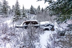 Lost in the Woods (Karen_Chappell) Tags: car old snow weather vehicle rusted rusty woods forest trees nature pippypark stjohns newfoundland nfld canada eastcoast atlanticcanada avalonpeninsula winter evergreen