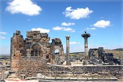 le capitole et les vestiges d'un des temples3/6 (philippedaniele) Tags: maroc meknes fes volubilis vestiges vestigesromains acropole temple cigognes