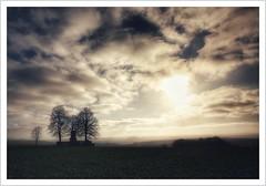 Ob das Napoleon auch so gesehen hat? (Norbert Kaiser) Tags: sachsen saxony sächsischeschweiz saxonswitzerland elbsandsteingebirge elbesandstonemountains hohburkersdorferrundblick hohburkersdorf linden baumgruppe denkmal weltkriegsdenkmal warmonument warmemorial bäume trees treegroup aussicht himmel sky wolken clouds landschaft landscape
