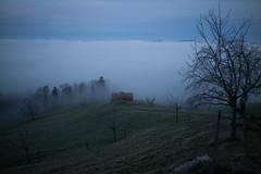 Schwyzer Höhenweg (Toni_V) Tags: m2402978 rangefinder messsucher leica leicam typ240 28mm elmaritm12828asph hiking wanderung immenseeseebodenalpdächliarth schwyz schwyzerhöhenweg fog nebel mist nebelmeer seaoffog switzerland schweiz suisse svizzera svizra europe sunrise sonnenaufgang ©toniv 2020 200103