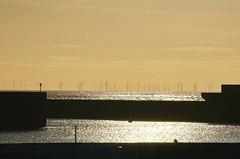 Wind Farm (markyhmac) Tags: brighton english channel windfarm sunset