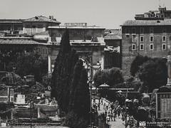 190705-023 Vue sur le forum (clamato39) Tags: forum rome italie italy europe voyage trip ville city ruins ruines landmark patrimoine old blackandwhite monochrome noiretblanc