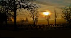 Cemetery Visit. (Tim @ Photovisions) Tags: fog xt1 cemetery fuji morning fujifilm nebraska gagecounty headstones beatrice