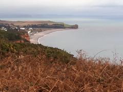 4 January 2020 Budleigh Salterton (togetherthroughlife) Tags: 2020 january devon coast budleighsalterton