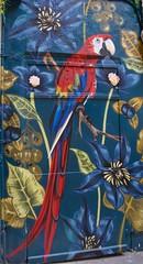 Lloro en un mural de Ciutat Vella, Barcelona. (heraldeixample) Tags: graffiti grafit pintada mural 落書き grafite 涂鸦 граффити heraldeixample bcn barcelona spain espanya españa spanien catalunya catalonia cataluña catalogne catalogna lloro parrot loro parroquet papagei vogelscheuche guenon hag ngc albertdelahoz