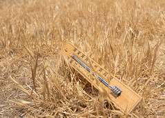 (Laszlo Papinot) Tags: summer fotf fifth freestyleonthefifth theme challenge thermometer scale grass dry dead heath offthescale summertime