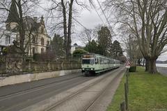 Am Vater Rhein entlang (Tim Boric) Tags: königswinter rheinallee rhein rijn rhine tram tramway streetcar strassenbahn überlandbahn interurban stadtbahn b düwag duewag ssb